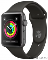Часы Apple Watch 42mm Gray (Серый)